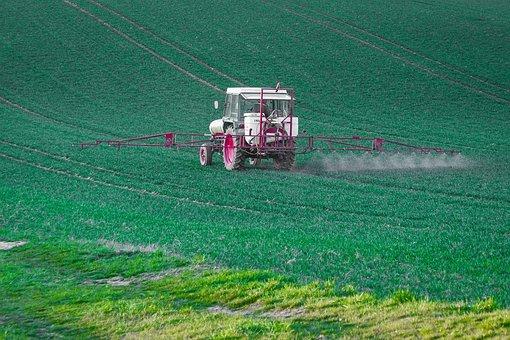 Pesticide, Glyphosate, Plant Protection