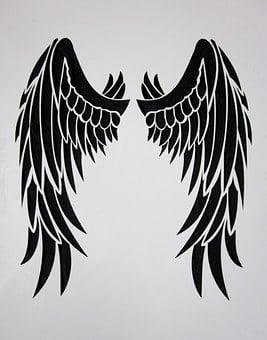 Wing, Black, Feather, Bird, Black Wings